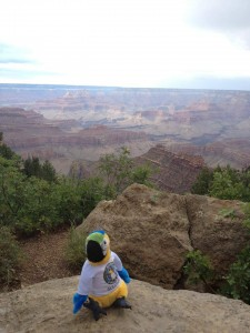 gulliver-grand-canyon